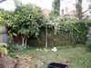 Newgarden2_1